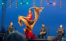 Flamenco na plaży 7.08.2015