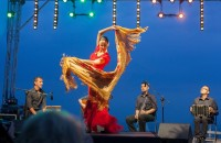 Flamenco on the Beach 7th August 2015